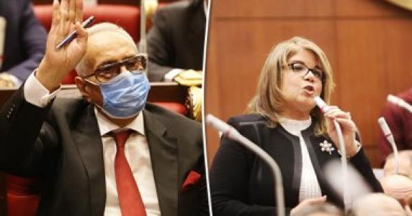 رسميا.. فوز المستشار بهاء أبو شقة والنائبة فيبى فوزى بمقعدى وكالة مجلس الشيوخ