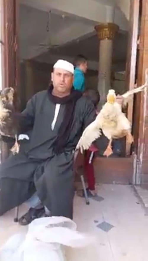 """""""فراخ وبط وأرانب"""".. أغرب تبرعات لترميم مسجد بقرية في كفر الشيخ"""